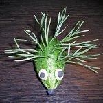 Зеленый ёжик из огурца и сосновых иголок